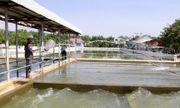 Nguyên nhân nào khiến Đà Nẵng hủy kết quả đấu thầu dự án xây dựng Nhà máy nước Hòa Liên?