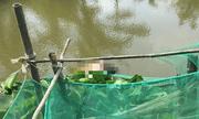 Điều tra vụ thi thể người đàn ông trôi trên sông ở Bạc Liêu, nghi mang quốc tịch Trung Quốc