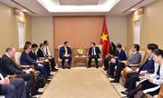 Việt Nam khuyến khích, tạo điều kiện cho các doanh nghiệp tham gia dự án năng lượng