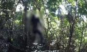 Kiên Giang: Phát hiện thi thể người đàn ông trong tư thế treo cổ trên núi Đèn