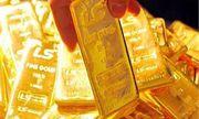 Giá vàng hôm nay 17/2/2020: Giá vàng SJC chững lại, giá vàng thế giới tiếp tục tăng