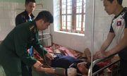 Nghệ An: Cứu sống người đàn ông ăn lá ngón tự tử vì giận vợ
