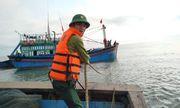 Kịp thời cứu 11 thuyền viên trên tàu cá gặp nạn ở cửa biển Thuận An