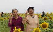 Dân mạng rần rần chia sẻ bộ ảnh kỷ niệm 60 năm tình bạn của 2 cụ bà 80 tuổi ở Nghệ An
