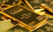 Giá vàng hôm nay 11/3/2020: Vàng SJC tiếp tục \