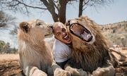 Video: Đàn sư tử vui mừng chào đón người từng chăm sóc sau thời gian xa cách