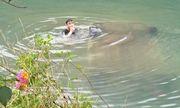 Ô tô 4 chỗ bất ngờ lao xuống sông, nữ tài xế tử vong trên ghế lái
