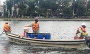 Công ty nào nhập chế phẩm Redoxy-3C xử lý ô nhiễm nước các hồ trên địa bàn Hà Nội?