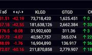 Thị trường chứng khoán ngày 23/3: Áp lực bán tháo mạnh, hàng loạt Bluechips giảm sàn