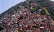 Xã hội đen Brazil đăt ra