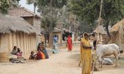 Ấn Độ: Dân làng bị kỳ thị vì tên ngôi làng trùng cách phát âm với virus corona