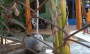Nghi án con trai sát hại cha ở Tiền Giang: Bi kịch tại ngôi nhà ở mép sông
