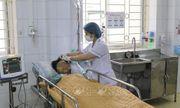 Điện Biên: Ăn nhầm nấm độc, 1 người tử vong, 1 người nguy kịch khó qua khỏi