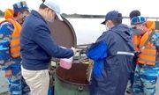 Tạm giữ tàu chở 100.000 lít dầu bất hợp pháp tại cửa sông Bạch Đằng