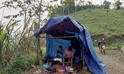 Rớt nước mắt cảnh hai nữ sinh vùng cao dựng lán giữa đồi để học online