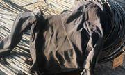 Bình Dương: Nam công nhân tử vong khi đang làm việc trong công ty thép