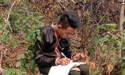 Học sinh vùng cao dựng lán, đào củ rừng kiếm tiền mua thẻ điện thoại để học online trong mùa dịch