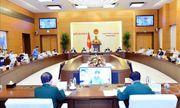 Ủy ban Thường vụ Quốc hội cho ý kiến 6 dự án luật tại Phiên họp thứ 44
