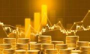 Giá vàng hôm nay 28/4/2020: Giá vàng SJC giảm 100.000 đồng