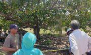 Tá hỏa phát hiện người đàn ông chết trong tư thế treo cổ ở nghĩa địa