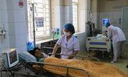 Ba cháu bé tử vong do ăn nấm độc: Nỗi đau xé lòng và bài học