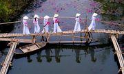 Nhiếp ảnh gia Việt Nam gây