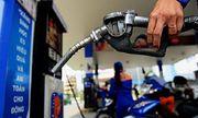 Giá xăng dự kiến có thể tăng trở lại, lên mức 12.000 đồng/lít