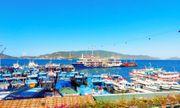 Vingroup đề xuất làm cầu vượt biển nối đất liền Nha Trang với đảo Hòn Tre