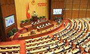 Kỳ họp thứ 9, Quốc hội khóa XIV: Có nên xây dựng riêng một luật cho hộ kinh doanh