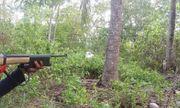 Cùng đi săn trong rừng, cha bắn nhầm con trai tử vong