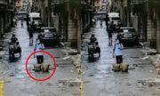 Video: Mải chơi điện thoại, nam thanh niên rơi xuống cống