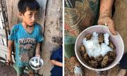 Rơi nước mắt xót thương 4 đứa trẻ chia nhau bát cơm ăn chung với xác ve sầu