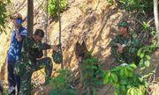 Vụ phạm nhân giết người Triệu Quân Sự vượt ngục lần 2: Hơn 200 chiến sĩ truy tìm phạm nhân