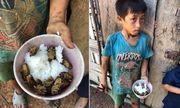 Vụ 4 đứa trẻ Đắk Lắk ăn cơm nguội với ve sầu: Lãnh đạo huyện nói do