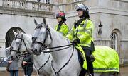 Lực lượng cảnh sát kỵ binh nước ngoài: Ngựa được lựa chọn kĩ, mỗi sĩ quan có thêm 400 giờ huấn luyện