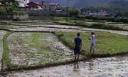 Trọng án ở Điện Biên, 2 người đàn ông chết trong nhà, 1 người phụ nữ tử vong ngoài đồng