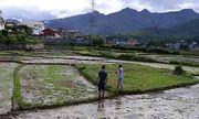 Vụ 2 người đàn ông cùng 1 phụ nữ chết bí ẩn ở Điện Biên: Lãnh đạo thị trấn thông tin bất ngờ