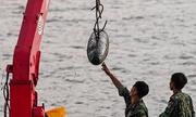 Vớt quả bom dài 1,6 mét nằm dưới sông Hồng gần cầu Long Biên