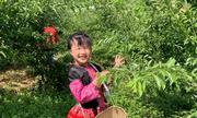 Con gái 6 tuổi của BTV Khánh Ly