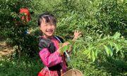 Cô bé 6 tuổi nói tiếng Anh như người bản ngữ, các mẹ