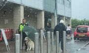 Nhường ô che mưa cho thú cưng, bảo vệ được khen ngợi là