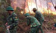 Nghệ An: Rừng thông bốc cháy ngùn ngụt giữa trưa nắng nóng