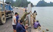 Vụ ô tô lao xuống biển Hạ Long, 4 người chết: Chủ đầu tư, nhà thầu thi công sẽ bị xử lý thế nào?