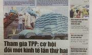 Thời báo Kinh tế Việt Nam giải thể