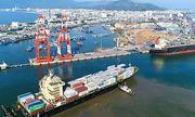 """Nghi ngờ suất đầu tư bến số 1, cảng Quy Nhơn """"chênh cao"""", VAFI đề nghị CMB tính toán lại"""