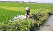 Theo bà ra ruộng bơm nước cho lúa, bé 6 tuổi ngã xuống suối, đuối nước thương tâm