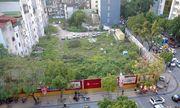 Hà Nội: Sở TN&MT kiến nghị thu hồi đất đối với 28 dự án