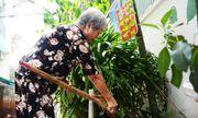 Cụ bà 70 tuổi hơn 14 năm quét rác cho cả xóm ở Sài Gòn