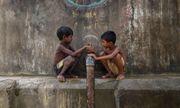 Gần 1/3 trẻ em thế giới có nguy cơ giảm IQ, tăng hành vi bạo lực vì nhiễm độc chì