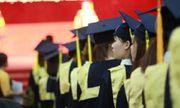 Cấp bằng kỹ sư cho sinh viên theo luật mới: Bộ GD&ĐT nói gì?